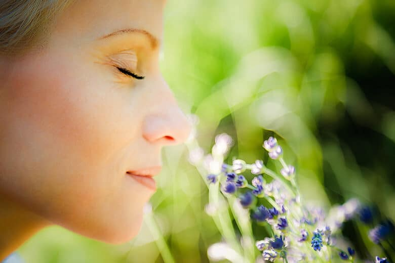 Close up portrait of a woman, with eyes closed and with a gentle smile on her face, smelling lavender on warm Summer day. Joy and scent of Summer concept. Selective focus, natural light,blurred background.